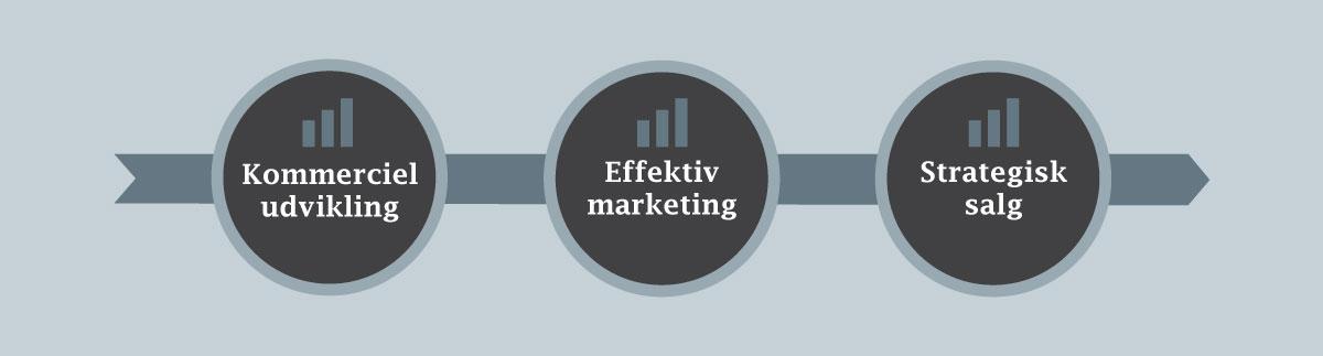 lars halskov - kommerciel udvikling, effektiv marketing, strategisk salg