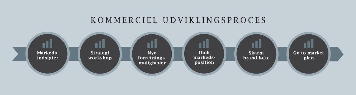 Lars Halskov - kommerciel udviklingsproces - markedsindsigter, strategi workshop, nye forretningsmuligheder, unik markedsposition, skarpt brand løfte, go-to-market plan