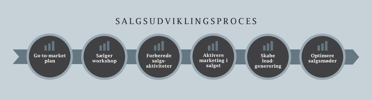 Lars Halskov - salgsudviklingsproces - go-to-market plan, sælger workshop, forberede salgsaktiviteter, aktivere marketing i salget, skabe lead generering, optimere salgsmøder